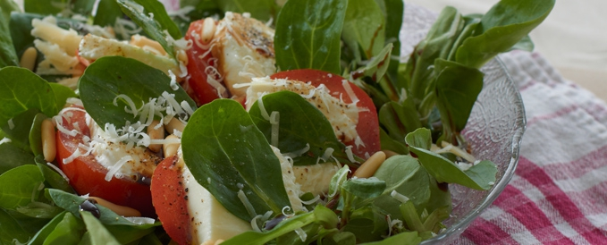 Mozzarella with Tomatos and Spinach - Almased